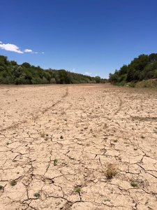 Orange river in drought